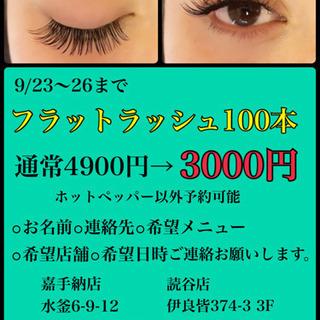 フラットラッシュ100本3000円