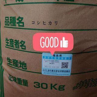 コシヒカリ 玄米10キロ