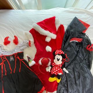 ハロウィンとクリスマス衣装