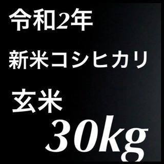 令和2年 新米コシヒカリ 玄米30kg  他対応します❗️