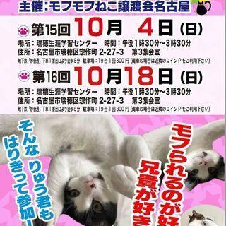 10月18日(日)  猫の譲渡会 in 名古屋市瑞穂生涯学習センター