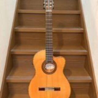 エレガットギター売ります。