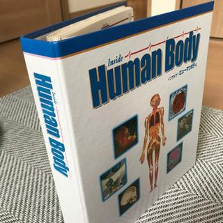 Human Body(ヒューマン・ボディー)法医学の概要