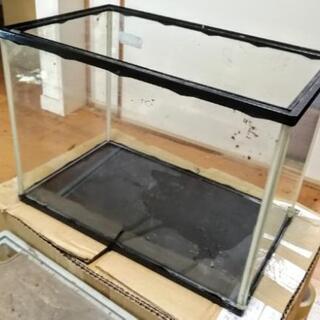 40cm ガラス水槽★アクラリウム