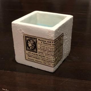 リメイク鉢(コンクリ)…④