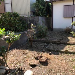 草刈り、剪定、伐採、除草剤¥6.000〜 - 東海市