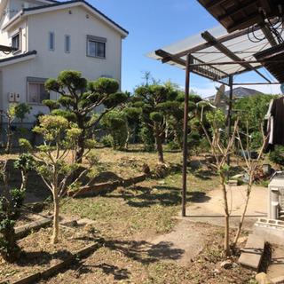 草刈り、剪定、伐採、除草剤¥6.000〜 − 愛知県