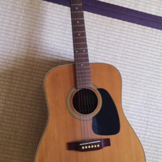 取引中 takamine ギター