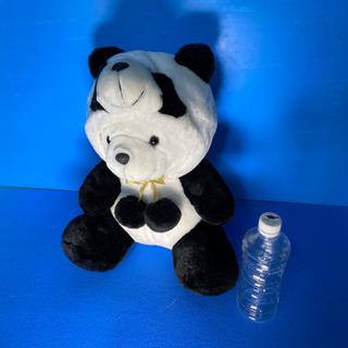 パンダ着ぐるみクマ
