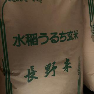 令和元年度産コシヒカリ玄米