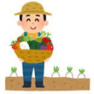 農業・畑仕事 無料で手伝います