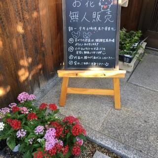 お花の無人販売!週に一度は仕入れに行きます!不定休です(o^^o)