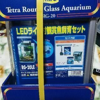 オールインワン水槽セット‼️曲げガラス‼️