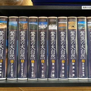 脅威の大自然 VHSビデオ全10巻セット