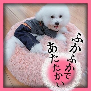ペットベッド (犬/猫)♥値下げ10/3(^^♪