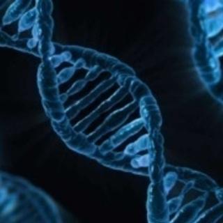 食べ物は安全?無料、根拠に基づいた細胞科学セミナー