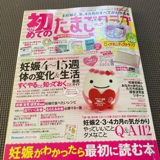 初めての たまごクラブ 妊娠2ヶ月〜4ヶ月 雑誌 マタニティ