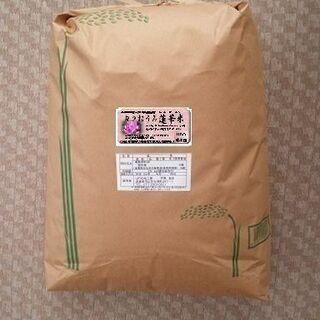 こだわり米-玄米30kgの精米-12