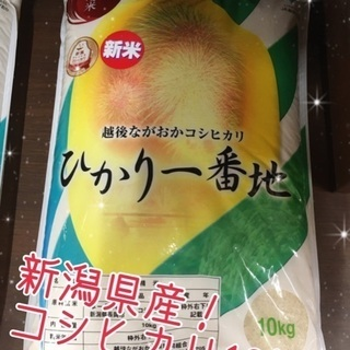 新潟県産コシヒカリ10キロ 精米済み
