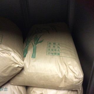 新米 元気つくし30kg玄米