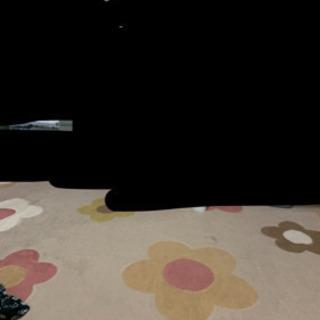 絨毯 ラグ 3畳用