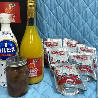 ④百貨店飲料セット 複数取り引き特典有り