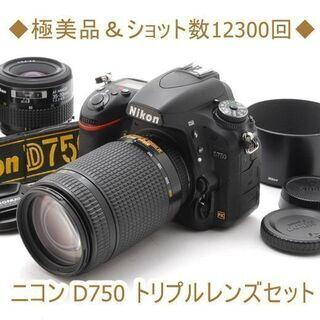 ◆極美品&ショット数12300回◆ニコン D750 トリプルレン...