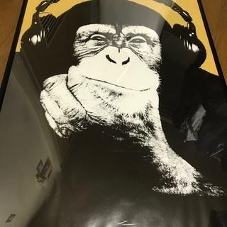 ポスター モンキー 猿 インテリア譲ります
