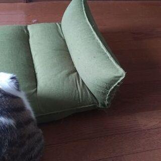 色んな角度に曲がる座椅子 − 埼玉県
