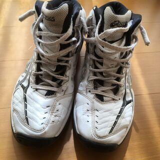 バスケットボールシューズ25.5