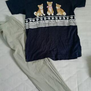 フロリダキースポロシャツとパンツ