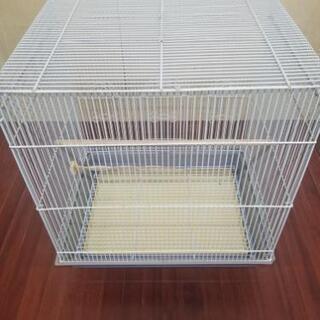 鳥カゴ 飼育ケース - 下関市