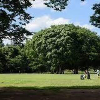 代々木公園パークヨガ&ピラティス