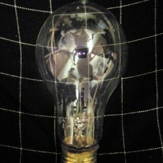 未使用 エジソン炭素電球 100v40w