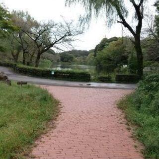 三ツ池公園でパークヨガします❗️