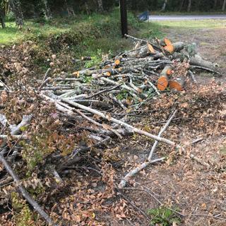 薪 ストーブ 広葉樹ミックス