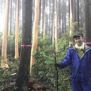 森を作ろう!「きらめ樹」の準備を行います
