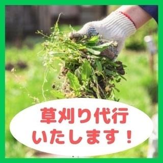 🌿お庭の草刈り/🌿草むしり/🌿雑草処理