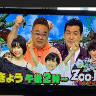 19型 テレビ