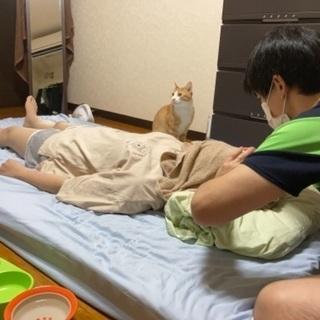 出張頭蓋調整【kokiri】