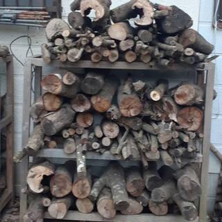 ☆冬が来ましたね~☆ 9か月前に伐採した超優良樫の木&おまけ付き...