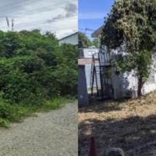 【地域限定格安プラン】空き地の草刈り、草むしり、木の伐採