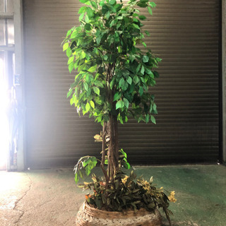 人工植物 観葉植物 模造植物 1.8m