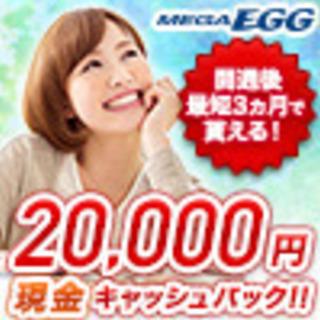 中国地方知名度No.1光インターネットならMEGA EGG(メガ...