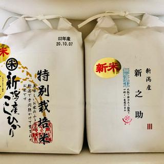 【ネット決済】新米 無洗米 4kg  新之助 こしひかり