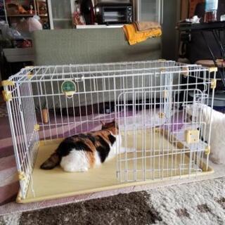 犬、猫 ゲージ(中古、使用感有り) - 厚木市