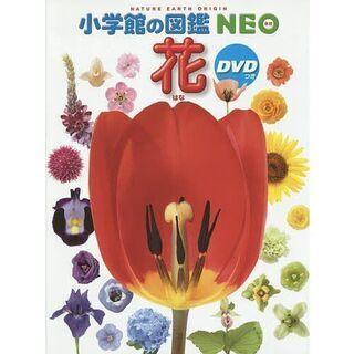 小学館の図鑑NEO 19 花 新品、未開封