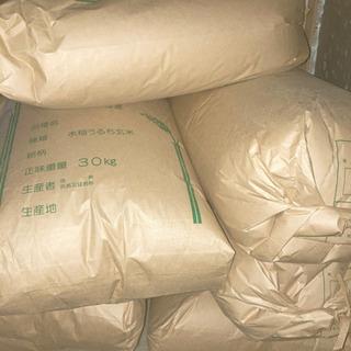 令和3年度千葉県産 コシヒカリ 玄米 30キロ