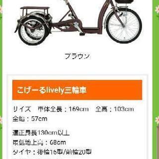 高齢者用三輪車 こげーるくん ほぼ新品