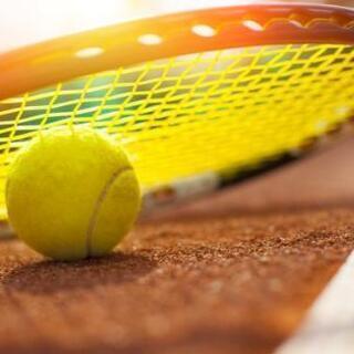 🎾11/14【社会人限定❗】テニス会イベントのお知らせ🎾